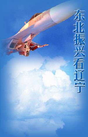 鹤飞天图片
