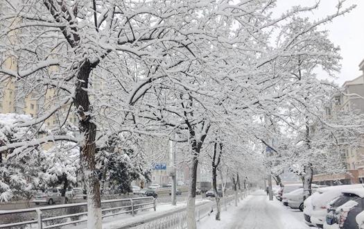 春之沈陽 盛京雪景