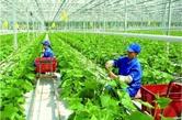 """盤錦構建""""三大體係""""引領現代農業發展"""