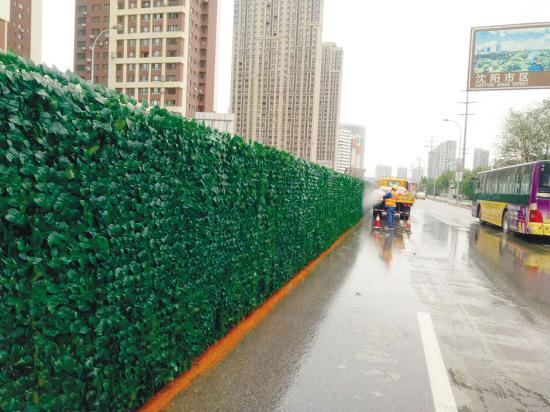 沈阳工地变风景:绿篱围挡