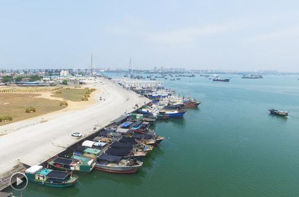 【视频】大连市启动伏季休渔期港口船舶专项整治行动