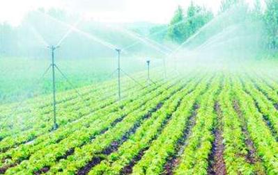 铁岭:三方联动 打开农业发展新空间