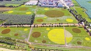 鞍山力爭2020年農業增加值實現114億元