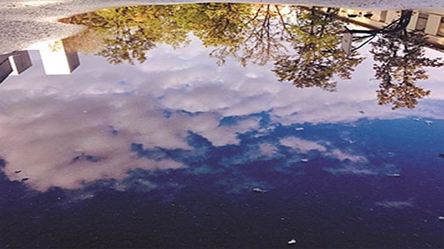 沈陽昨日喜雨:舉首天挂虹 低頭水映穹