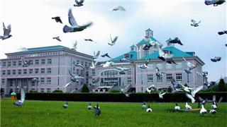 2018年遼寧普通高校錄取本科批投檔線發布