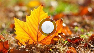 【视频】秋分节气养生防凉燥