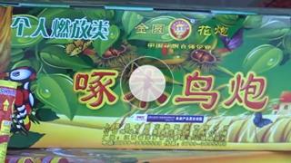【实况】沈阳2019年春节烟花爆竹燃放时间公视频2013安装教程图片
