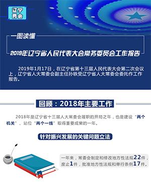 一圖讀懂 2019年遼寧省人民代表大會常務委員會工作報告