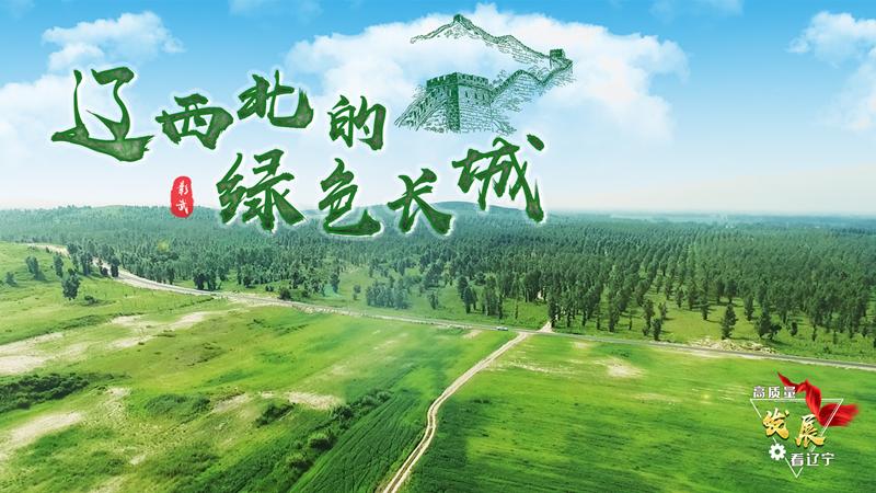 【視頻】彰武:遼西北的綠色長城