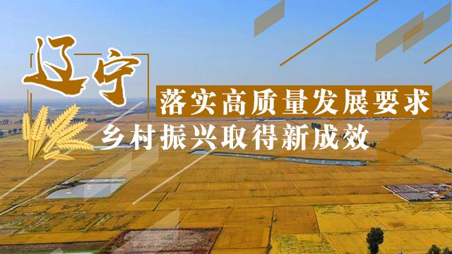遼寧落實(shi)高質量發展(zhan)要求 鄉村(cun)振興取(qu)得新成效