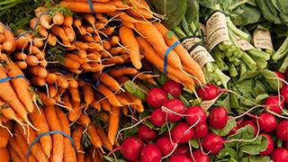 沈陽發布措施 穩産穩價保障農産品供應