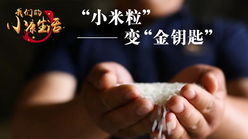 """""""小米粒""""變""""金鑰匙"""""""