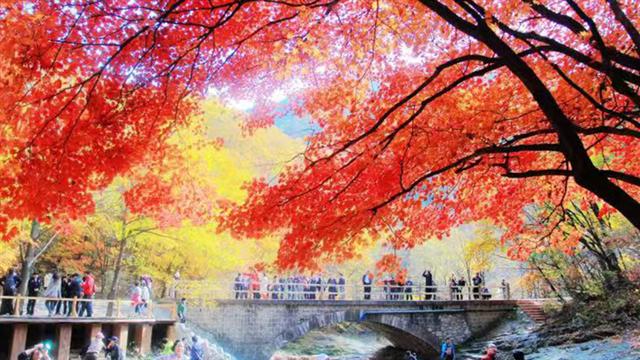 2020沈陽經濟區秋季遊活動啟動