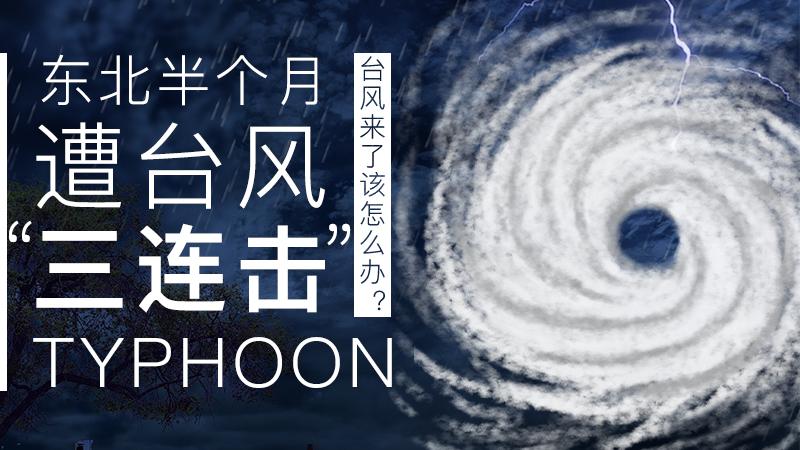 """東北半個月遭臺風""""三連擊"""",臺風來了該怎麼辦?"""