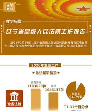數字掃描 遼寧省高級人民法院工作報告