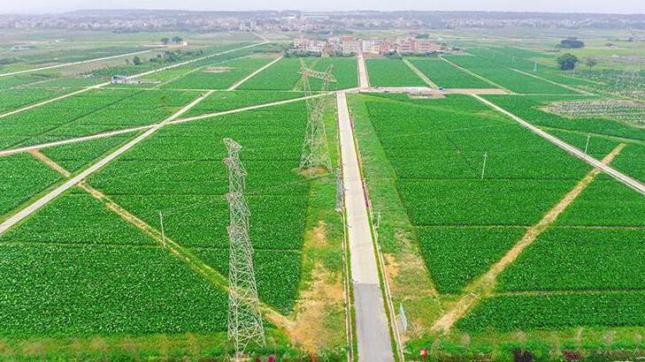 高標準農田建設項目總承包模式在遼寧推廣