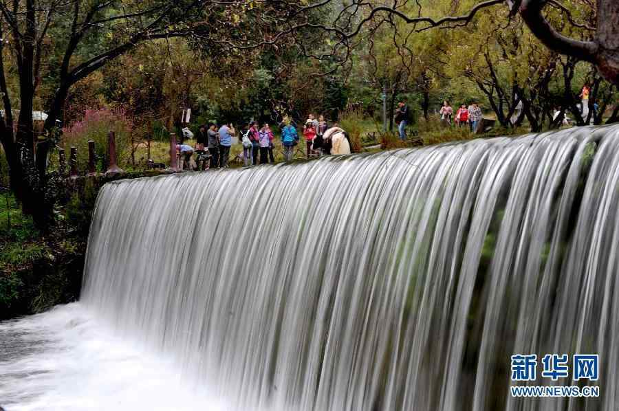 森林动物园游客累计超8万人次